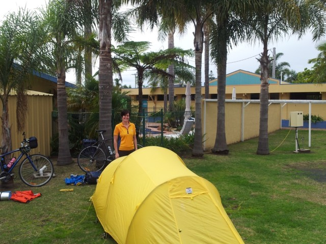 Camping under palms