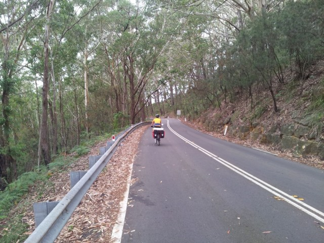Cycling through Royal National Park
